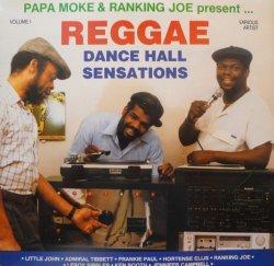 画像1: V.A. / REGGAE DANCE HALL SENSATIONS Vol.1 (LP)♪