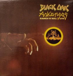 画像1: BLACK OAK ARKANSAS / RAUNCH 'N' ROLL LIVE (LP)♪